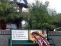 Reklama (bardzo) natywna