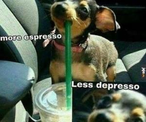 Tylko espresso może nas uratować