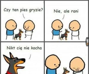 Ty okrutny psie!