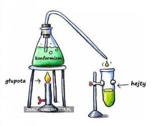 Internet jako reakcja chemiczna