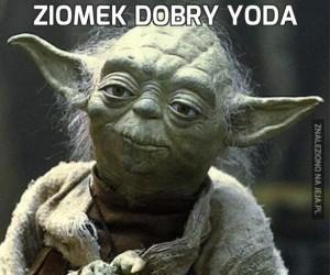 Ziomek dobry Yoda