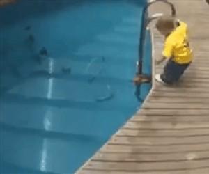 Niemowlak wskakuje do basenu i całkiem nieźle się zabawia
