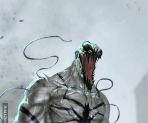 Anty Venom