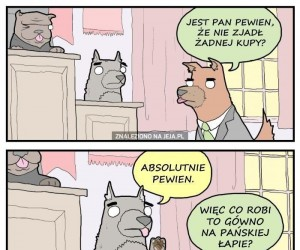 Pieski sąd