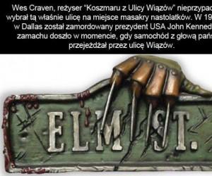 Ciekawostki na temat horrorów: Ulica Wiązów