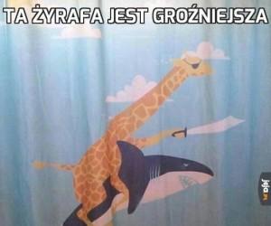 Ta żyrafa jest groźniejsza
