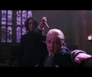 Harry Potter - Wonsz Rzeczny