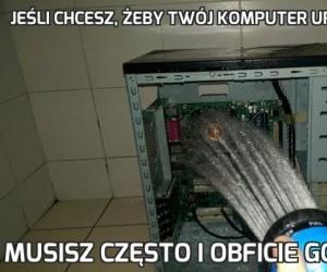 Jeśli chcesz, żeby Twój komputer urósł duży i silny
