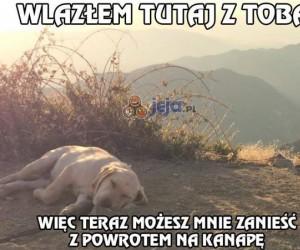 Pierwsza wycieczka mojego psa w góry