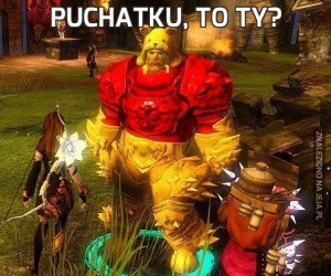 Puchatku, to ty?