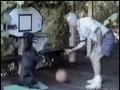 Granie z psem w koszykówkę