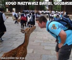 Kogo nazywasz Bambi, grubasie?