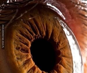 Oczy każdego z nas są wyjątkowe