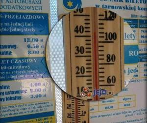 """""""Klimatyzowane"""" autobusy w Tarnowie"""