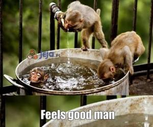Ach, orzeźwiająca kąpiel