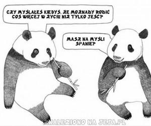 Rozmyślania pand