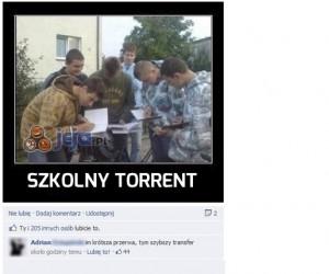 Szkolny torrent