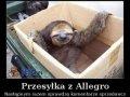 Przesyłka z Allegro