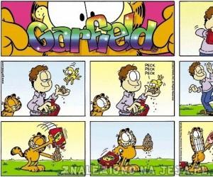 Garfield: Dokarmianie ptaków