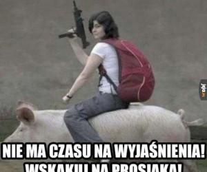 Do Grzechosławi!