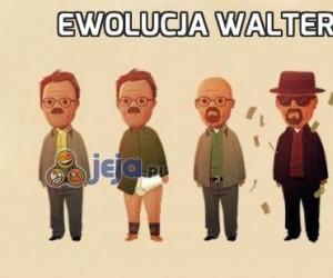 Ewolucja Waltera White'a