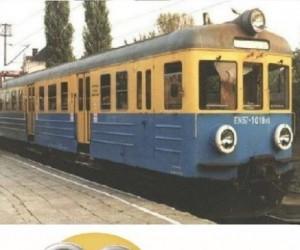 Polskie Minionki