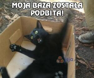 Nie zawsze warto sprawdzać co jest w pudełku