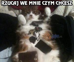 Czym rzucić w kota, żeby zlazł z łóżka?