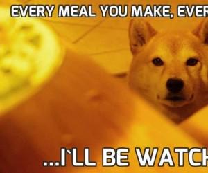 Every meal you make, Every bite you take...