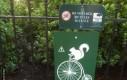 Uwaga na złodziejskie wiewiórki