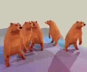 Hard Bear Party