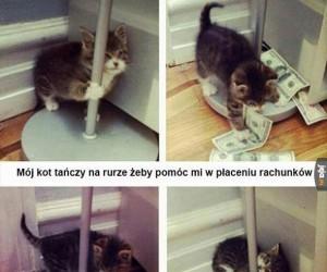 Dobry koteł