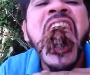 Gdy zjadłeś już tyle pająków, że musisz dwa wypluć...