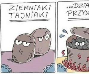 Sprytne ziemniaki