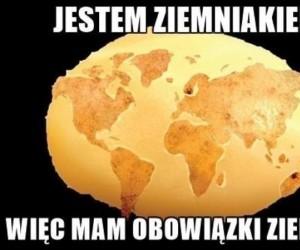 Jestem ziemniakiem