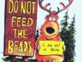 Nie jestem niedźwiadkiem