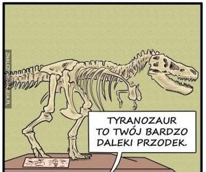 Kaczki zostały pokrzywdzone przez ewolucję