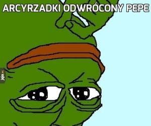 Arcyrzadki odwrócony Pepe