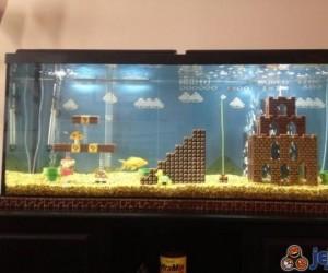 Pomysłowy wystrój akwarium