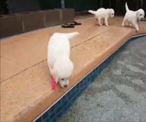 Pierwsza imprezka nad basenem
