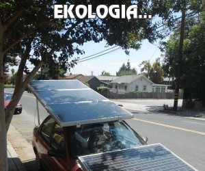 Ekologia...