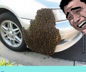 Żegnaj kochany samochodziku!