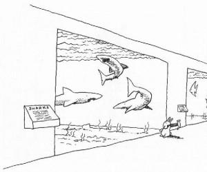 Samobójstwa zajączka: Zajączek i rekiny