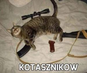 Kotasznikow