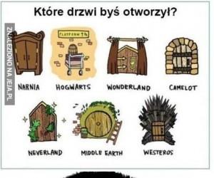 Które drzwi byś wybrał?