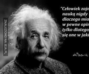 Mądry cytat Alberta Einsteina