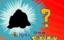 Co to za Pokemon?