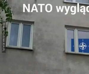 NATO Wygląda