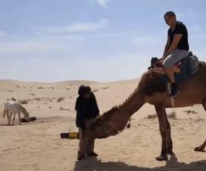 Zejście z wielbłąda - robisz to źle