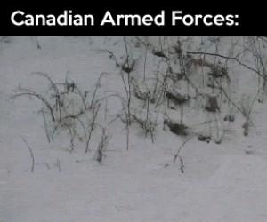 Kanadyjskie siły zbrojne